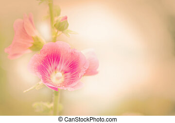 Holly Hock flowers Hollyhock pink ,vintage retro pastel...