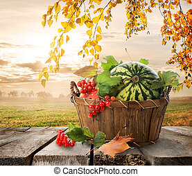 Basket with watermelons on a nature background