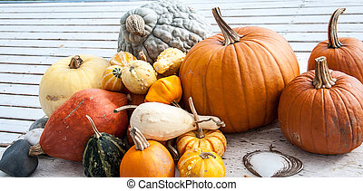 fall display - Assortment of pumpkins, squash and colorful...