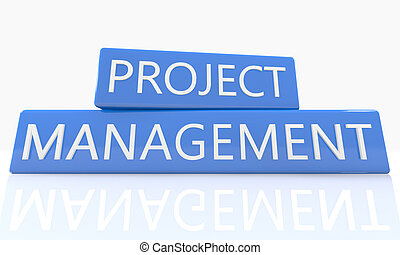 Project Management - 3d render blue box with text Project...