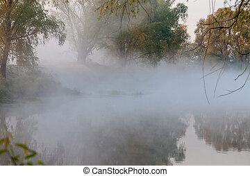 hermoso, Niebla, en, Un, río, foto,
