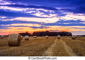 End of day over field with hay bale in Hungary This photo...