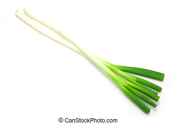 scallion - studio shot of fresh food on white background
