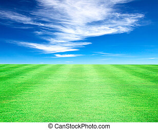 Lawn sky abstract nature plain white clouds.