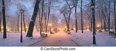 Mariinsky garden during inclement weather has its charm and...