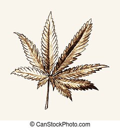 Marijuana Leaf Sketch - Sketch illustration of marijuana...