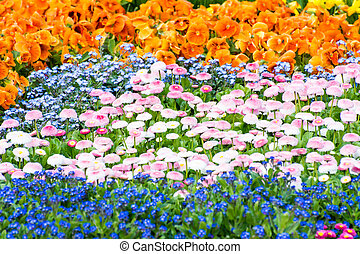 Gorgeous Flower Bed - Garden with a flower bed full of...