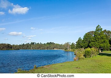 Beautiful lake and landscaped park with lawn and trees in...