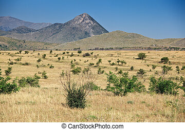 Torrid landscapes of Calabria - Typical torrid landscape...