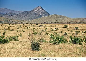 Torrid landscapes of Calabria - Typical torrid landscape...