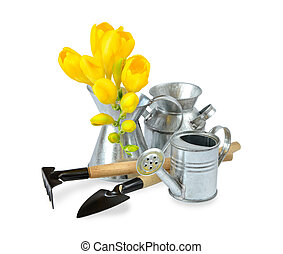 Garden tools and yellow freesia flowers on a white...