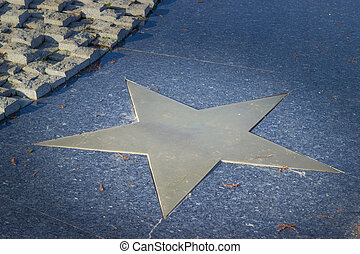 Bronze star in pavement