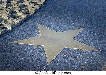 Bronze star in pavement