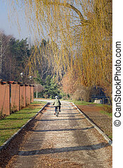 Boy pedaling in a park