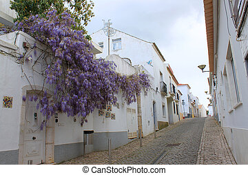 Wisteria lane - Cobblestone narrow street in Lagos, Algarve,...