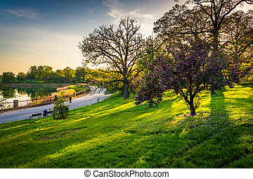 Colorful trees and view of Druid Lake in Druid Hill Park,...