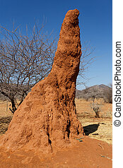 Huge red termite mound in Africa - Huge red, orange termite...