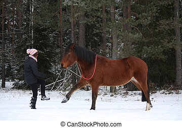 Teenager girl and brown horse playing together in winter...