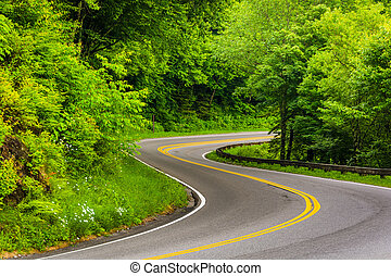 Curve on Newfound Gap Road at Great Smoky Mountains National...