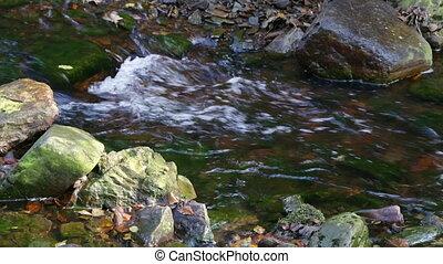 Small Mountain Creek
