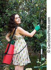 Woman spraying tree branches - Young woman spraying tree...