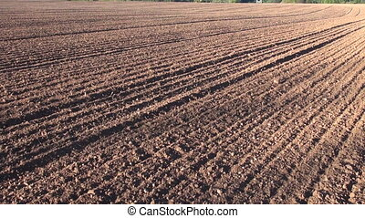 plowed cultivated agriculture field - plowed cultivated...