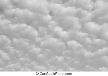 Altocumulus clouds. Black and white.