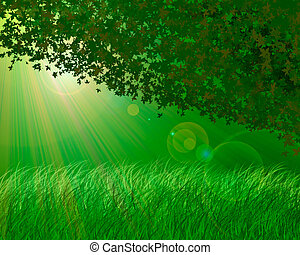 Forest background - Abstract forest background
