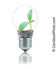 Eco-friendly lightbulb - Small plant with water drops and...