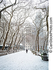 Snowing Bryant Park - Heavy snowfall in Bryant Park in New...