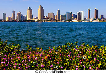 San Diego California - San Diego with flowers in the...