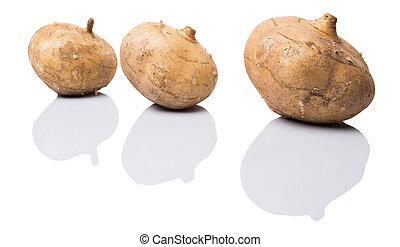 Jicama Or Mexican Yam - Jamaica or Mexican yam over white...