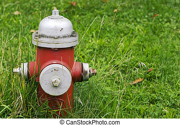 Fire hydrant on grass.
