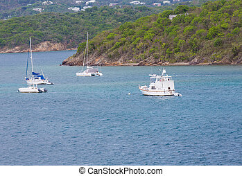 Sailboats and Cabin Cruiser Moored in Bay - Many white boats...