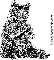 bear wearing sunglasses black and white illustration