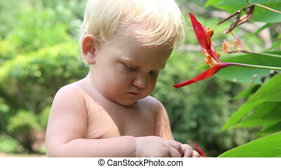 child learns flower