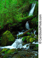 A silky waterfall - Merrymere falls in Olympic National Park