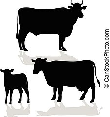 Cow Family Silhouette with Shadow - Illustration of cows...