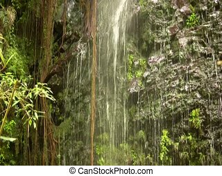 cloudforest waterfall - on the rio Pita, Ecuador