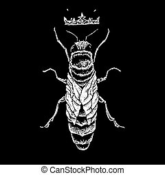 queen bee black and white illustration