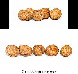 Set of walnuts 5 in each row