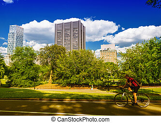 Biker riding in Central Park on a sunny summer day with...