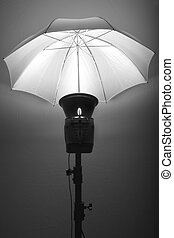 Sudio Flash Stobe Light and Umbrella on Stand - Detail of...