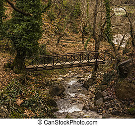 Small Wooden Bridge over a Stream in Forest at winter