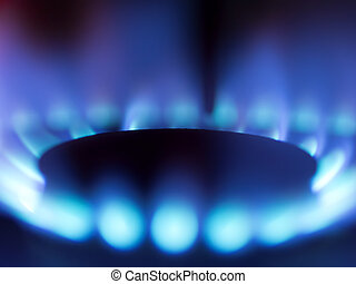 gas stove blue flame - close up of gas stove blue flame