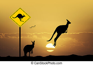 Kangaroo sign caution - illustration of kangaroo sign...