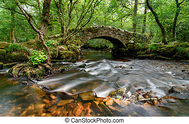 Dartmoor Bridge - An ancient stone packhorse bridge crossing...
