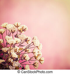 Vintage nature background with lovely flowers