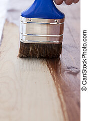 aplying varnish with - brush with blue handle applying...
