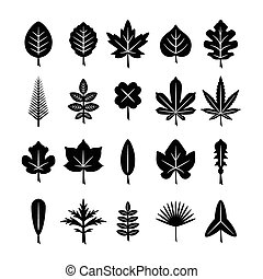 Set icons of leaf isolated on white